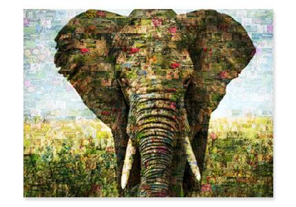 Fotomosaik Beispielbild mit Elefant